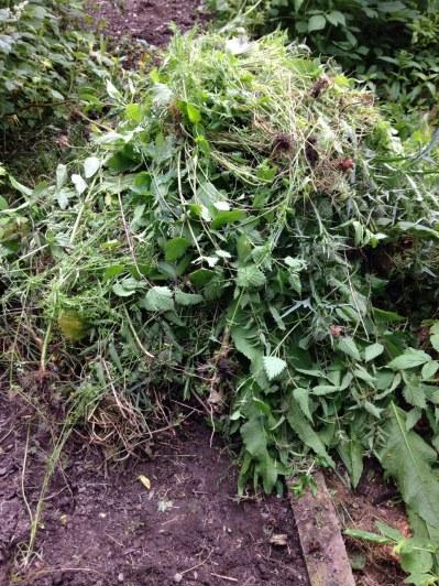 Weed pile - 05072016 - SH