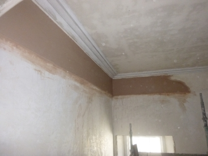 plastering-top-hall-29082016