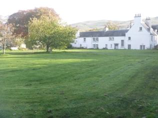 garden-back-lawn-31102016