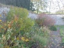 garden-herb-border-31102016