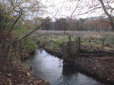 fence-by-stream-19112016