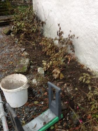 front-garden-2-16112016-sh