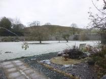 heavy-frost-in-garden-26112016