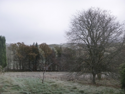 icy-view-at-front-20112016