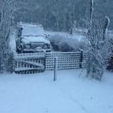 snow-1-12012017-sh