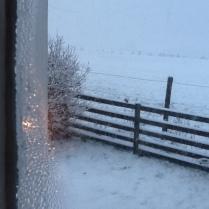 snow-2-12012017-sh