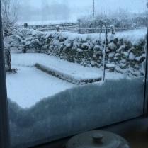 snow-3-12012017-sh