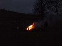 bonfire - 25022017