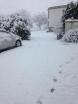 Snow 2 - 27022017 - SH