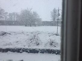 Snow - 27022017 - SH