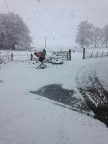 Snow 4 - 27022017 - SH