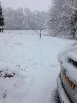 Snow 5 - 27022017 - SH