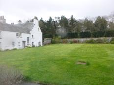 Back lawn 2 - 15042017