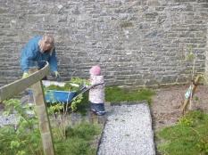 Emilia & grass 3 - 15042017