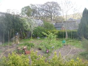 Flower garden 1 - 11052017
