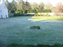 Frost on back lawn 2 - 06052017