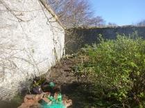 Garden - top corner 4 - 02042017