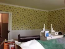 Sitting room wallpaper 1 - 23052017 - SH