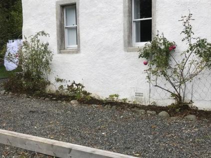 Fron flower bed weeded 1 - 05102017