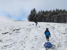 snow 3 - 26122017