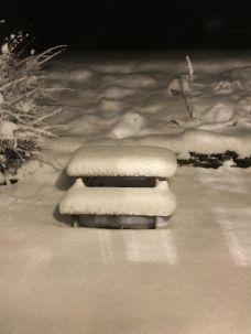 Snow 1 - 16012018