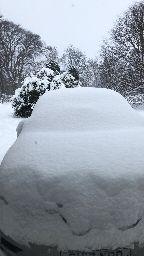 Snow 1 - 28022018