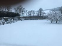 Snow 11 - 17012018