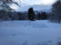 Snow 16 - 17012018