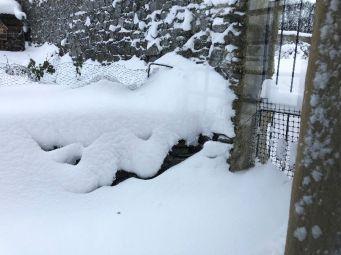 Snow 2 - 01032018