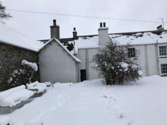Snow 2 - 02032018