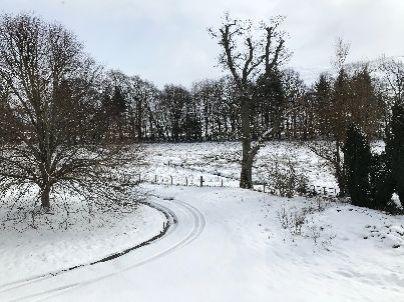 Snow 2 - 18032018