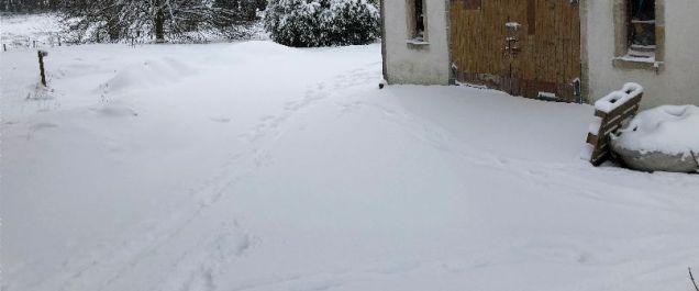 Snow 2 - 28022018