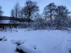 Snow 20 - 17012018