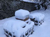 Snow 21 - 17012018