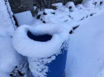 Snow 22 - 17012018