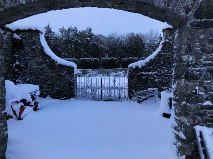 Snow 23 - 17012018