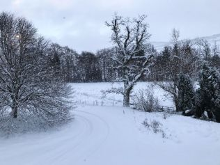 Snow 3 - 17012018