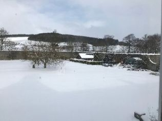 Snow 3 - 18032018