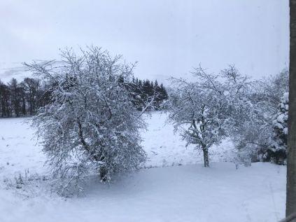 Snow 4 - 17012018
