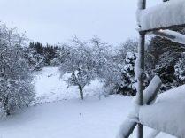 Snow 5 - 17012018