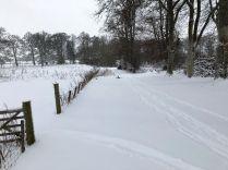 Snow 5 - 28022018