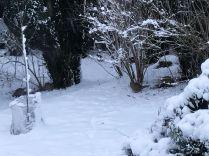 Snow 9 - 17012018