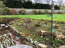 Alpine garden - 26042018