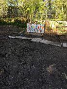 Caleb's garden - 14052018