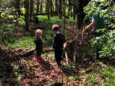 Dens in the woods 2 - 05052018