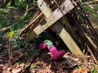 Dens in the woods 4 - 05052018