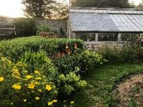 Flower garden 1 - 27062018