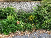 Herb border 2 - 27062018