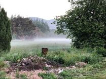 Mist in the valley - 2 - 09062018