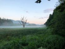 Mist in the valley - 4 - 09062018